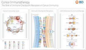 The role of immune checkpoint receptors in cancer immunity