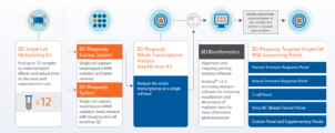 Whole transcriptome analysis (WTA) of a single cell – Now made easy.