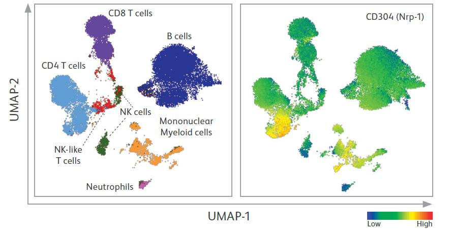 Delineation of functional Treg subsets using cell surface marker expression